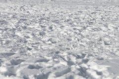 从积雪的领域的背景与踪影在与长的阴影和低太阳的一个晴天 库存图片