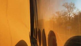 从窗口的公共汽车视图在行动森林夏天 大公共汽车沿森林公路移动 游览车在涂柏油去 影视素材