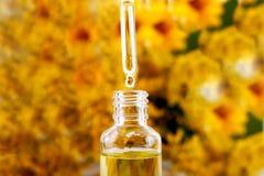 从精油、芳香疗法精华或者医药液体吸管下降落 免版税库存图片