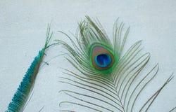 从精神地方, Ujjain的两根不同孔雀羽毛 免版税库存图片