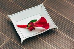 从红色水芋属的婚礼钮扣眼上插的花在白色垫座 特写镜头 附庸风雅 库存照片