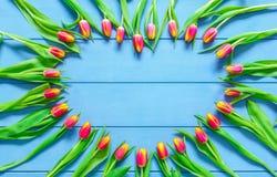 从红色郁金香的心脏在蓝色木桌上开花为3月8日,国际妇女天、生日、情人节或者母亲节 库存照片