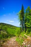 从线索的视图到从Beskidy山的Pilsko峰顶 免版税库存照片