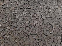 从缺乏崩裂的地球土壤水 图库摄影