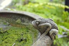 从罐型黏土的青蛙 图库摄影