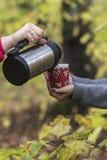 从罐头倾吐的咖啡杯 免版税库存照片