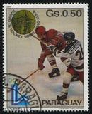从美国的曲棍球队冬季奥运会的在普莱西德湖城 免版税库存图片