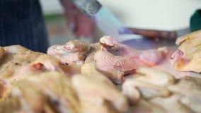 从羽毛被烧和清洗的被采的禽畜 股票视频