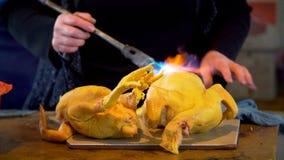 从羽毛被烧和清洗的被采的禽畜 股票录像