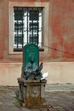 从老喷泉的鸽子饮用水 库存照片