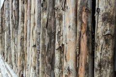 从老日志的特写镜头木墙壁 免版税库存照片