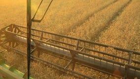 从联合收割机驾驶舱的看法会集麦子在日落 收获粮田,庄稼季节 股票录像