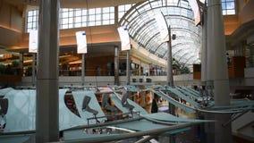 从自动扶梯的录影,登高在购物中心千年 影视素材