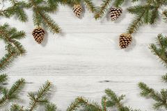 从自然杉树的框架分支与在木backgr的锥体 免版税图库摄影