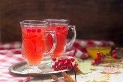 从荚莲属的植物的莓果的有用的维生素茶用与玻璃杯子的蜂蜜 免版税库存照片