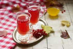 从荚莲属的植物的莓果的有用的维生素茶用与玻璃杯子的蜂蜜 库存图片