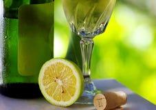 从葡萄牙的Vinho verde 库存图片