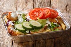 从薯条的外带的荷兰kapsalon,鸡,新鲜的沙拉 免版税库存图片