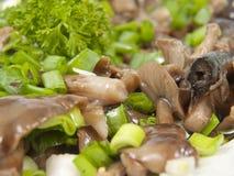 从蘑菇的沙拉 免版税库存照片