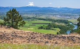 从表岩石的Mt麦克洛克林火山在俄勒冈 库存图片