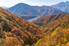 从观点Azuma湖线的中津川峡谷 免版税库存照片