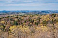 从豚脊丘的山的看法在万宝路,佛蒙特中 库存图片
