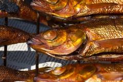 从贝加尔湖的热的熏制的鱼omul 库存图片