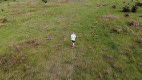 从跑在匈牙利草甸的一个人的空中英尺长度 股票录像