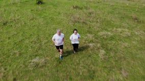 从跑在匈牙利草甸的夫妇的空中英尺长度 股票视频