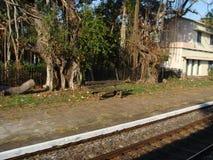 从跑长途铁路火车的一veiw 库存图片