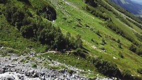 从远足小组的飞行寄生虫的空中射击走在山行迹 旅行在山谷的旅游小组 股票录像