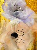 从透明硬沙的花室内装饰的 免版税库存图片