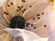 从透明硬沙的花室内装饰的 库存照片