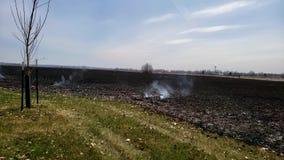 从闷燃的草原的烟在大草原火规定的烧伤以后 股票录像