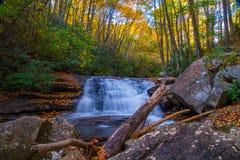 从阿巴拉契亚小瀑布的和平 库存图片