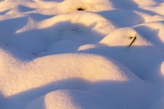 从雪的漂泊 免版税库存图片
