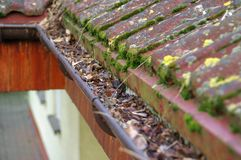 从青苔和叶子的清洁天沟 图库摄影