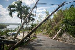 从飓风玛丽亚的残骸 库存照片