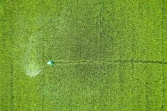 从飞行寄生虫的鸟瞰图 泰国农夫喷洒的化学制品 免版税库存照片