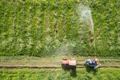 从飞行寄生虫的鸟瞰图 泰国农夫喷洒的化学制品 库存图片