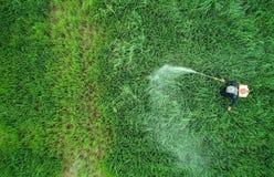 从飞行寄生虫的鸟瞰图 泰国农夫喷洒的化学制品 免版税图库摄影