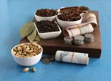 从香料概念的农业收入突出了与印度卢比和硬币 库存图片