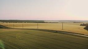 从驾驶白色汽车上的空中射击在沿农村的一个领域 影视素材