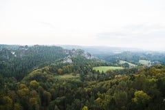 从高山的看法到密集的狂放的绿色森林 免版税库存照片
