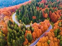 从高山通行证的弯曲道路,在秋天季节,与橙色森林 免版税库存照片