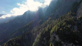 从鸟的飞行的高度的一个看法在黎明以后的在一座山的高山在云彩中的 波尔查诺地区 影视素材