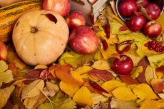 从黄色叶子,苹果,南瓜的秋天背景 秋季、eco食物和收获概念 免版税库存图片