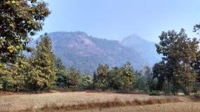 从Ajodhya pahar范围的小山 库存图片