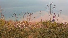 从Clifftop的象海滨顶头灯塔 库存照片