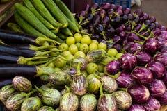 从Colaba的新鲜的素食者篮子销售农夫的市场:葱,茄子,薤,青葱,夫人的手指 库存照片